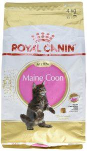 Futter für Maine-Coon-Kätzchen
