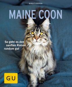 Berater für Maine-Coon-Neulinge