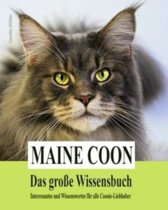 Tiefgehende Informationen rund um die Maine Coon