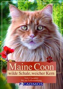 Viele tiefgehende Informationen zur Maine Coon